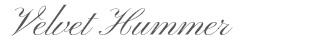 Velvet-Hummer