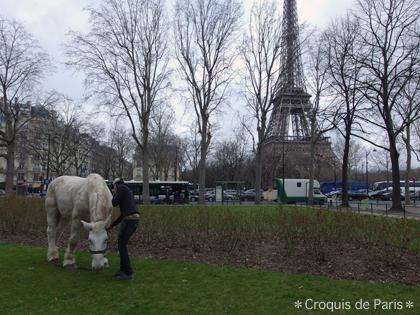 3普通に連れて行かれる馬さん