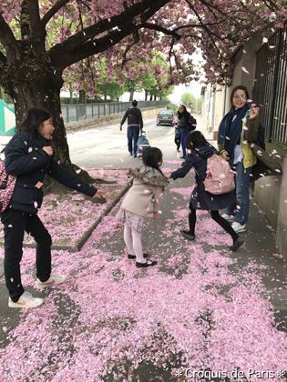 10ここにも桜