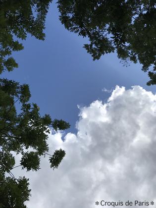 1終わりの夏の空
