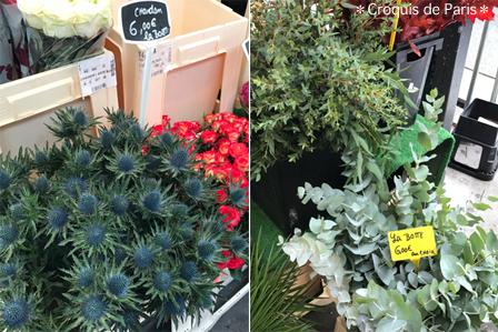 5実はこんな植物が好き