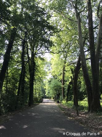 8 森の中の門
