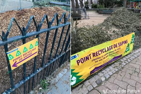 1クリスマスツリーはリサイクルへ