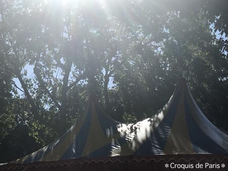 1公園にテント
