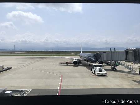 3再びの東京は飛行機で