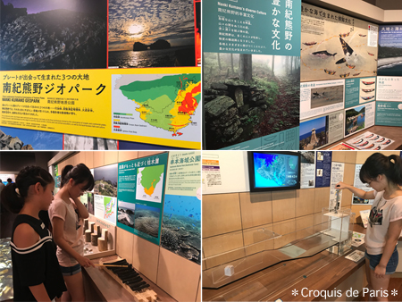 3南紀熊野ジオパーク