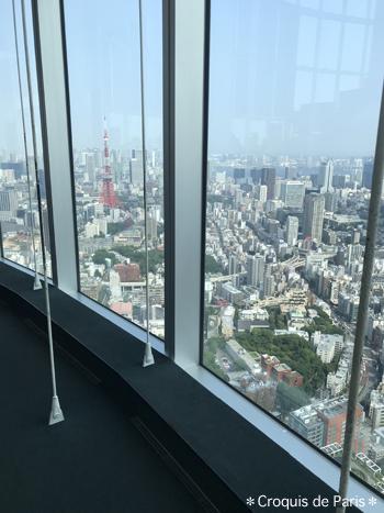 12 東京タワーも見れたね